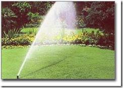 Impianti di irrigazione dall universit di pisa un for Calcolo impianto irrigazione